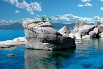 Bonsai Rock Closeup, Lake Tahoe
