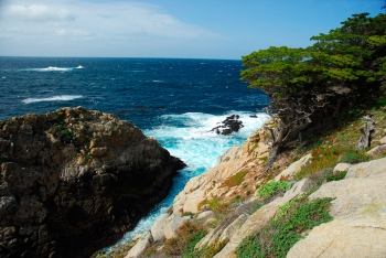 #0321 Point Lobos, CA